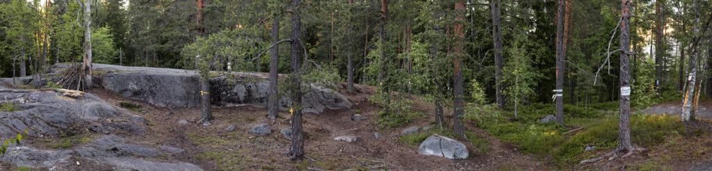 Pirkkolan liikuntahallin uhkaama kalliometsä