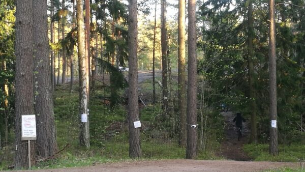 Pirkkolan metsä