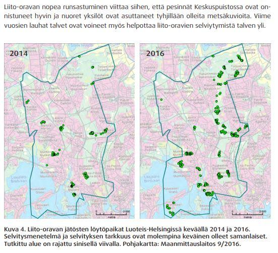 Helsingin liito-oravat, selvitykset 2014 ja 2016